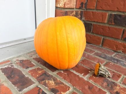pumpkin-hot-glue